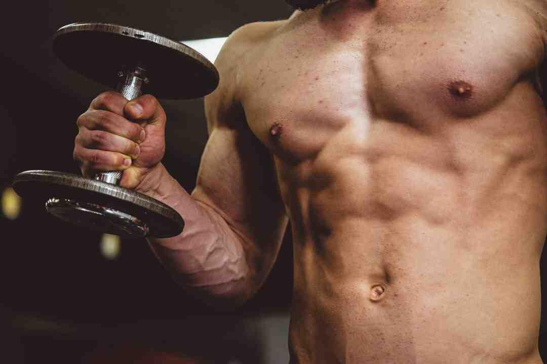 Programme musculation 5 jours par semaine